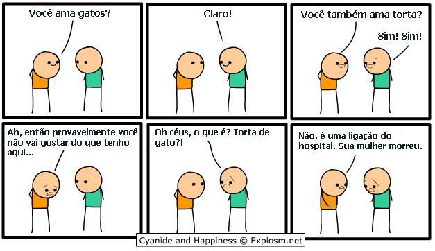 gatinho1